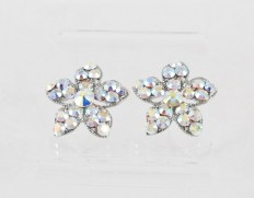 Crystal-snow-earrings-clearab